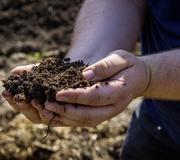 Bauckhof produziert dauerhaft CO2-neutral