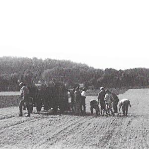Erste Waldorfschulklasse auf dem Bauckhof Amelinghausen, Eröffnung des Hofladens